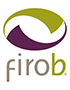 Leader Style and Leader Personality with FIRO-B® + MBTI® Tests